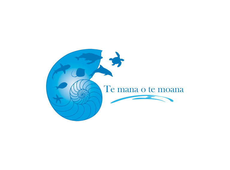 Vilebrequin Save the oceans - Te Mana O Te Moana Men Swimwear