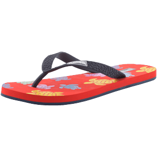 Homme AUTRES Imprimé - Tongs de Plage homme Tortues Multicolores, Nefle back