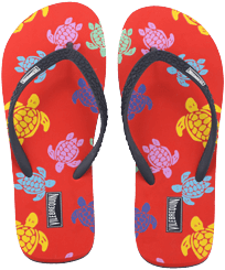 Women Others Printed - Women Flip Flops Tortues Multicolores, Medlar front