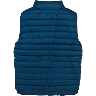 Boys Others Printed - Kids Reversible Sleeveless Down jacket Micro ronde des tortues, Spray back