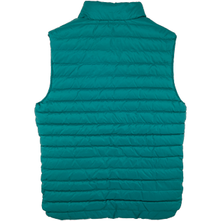 Others Solid - Unisex Sleeveless Down Jacket Solid, Pine wood back