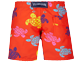 Boys Others Printed - Boys Swim Trunks Tortues Multicolores, Medlar back