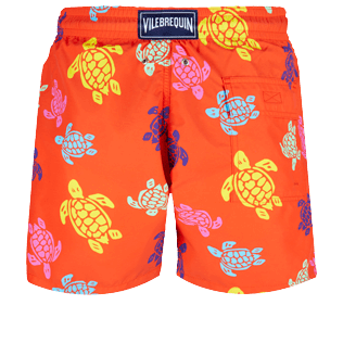 Men Classic Printed - Men Swim Trunks Tortues Multicolores, Medlar back