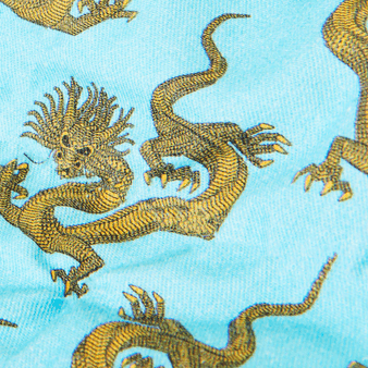 男士 So Kind Dragon 斜纹布长裤, Navy pattern