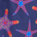 Men Swim Trunks Starfish Dance, Sapphire swatch