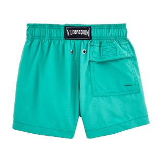 Boys Others Printed - Water-reactive Sardines à l'Huile Swim Shorts, Veronese green back