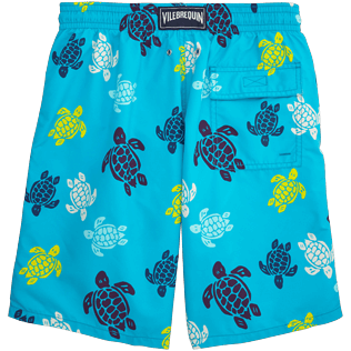 Men Long Printed - Tortues Multicolores Long Cut Swim shorts, Azure back
