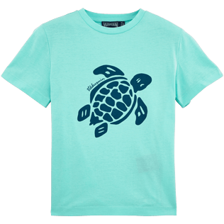 Boys Tee-Shirts Printed - Turtles Tee Shirt, Lagoon front