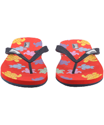 Men Others Printed - Men Flip Flops Tortues Multicolores, Medlar frontworn